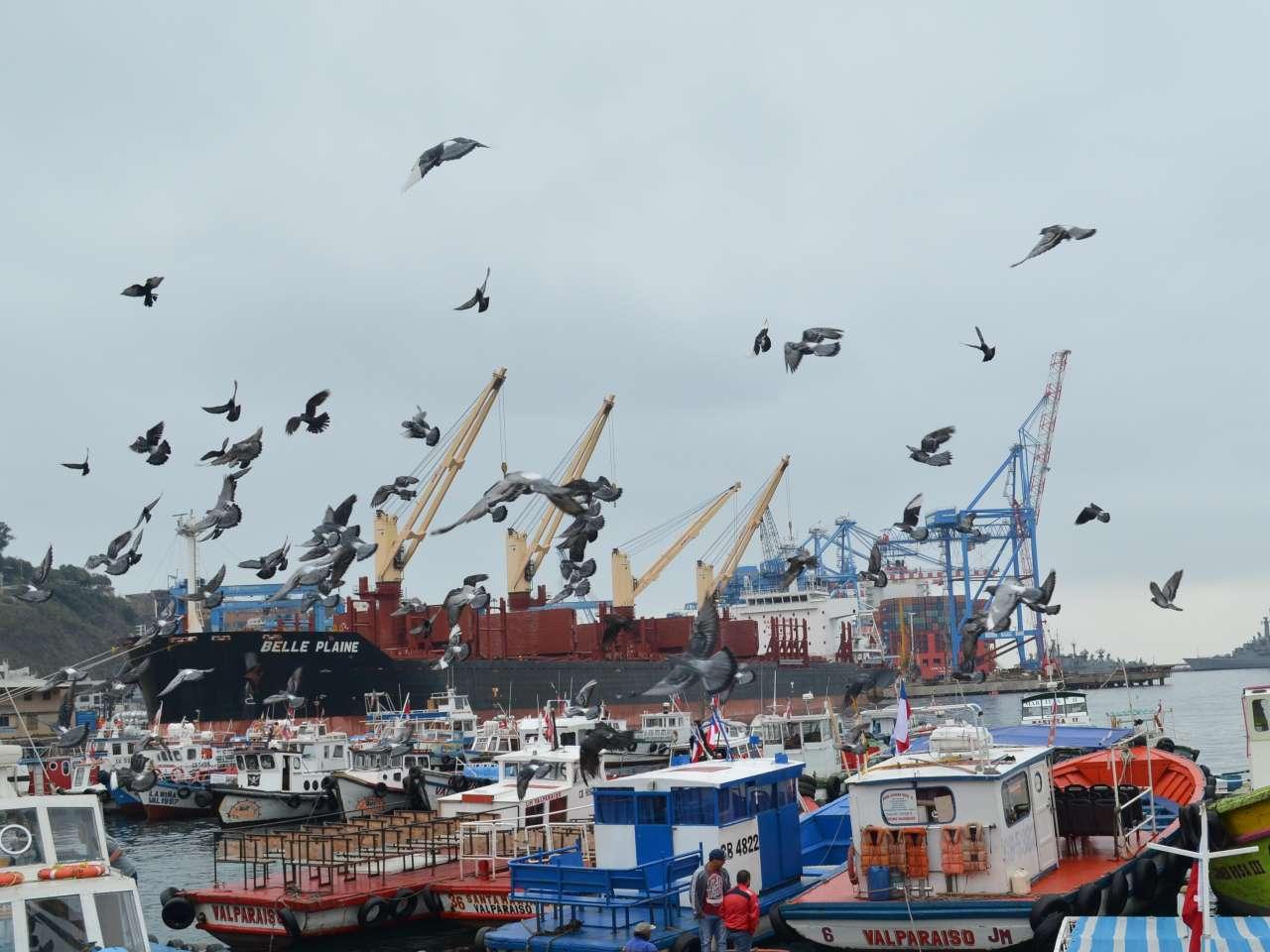 O dilema de Valparaíso